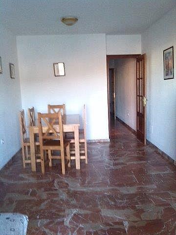 Piso en alquiler en calle Avenida Andalucia, Morche, El - 161559880