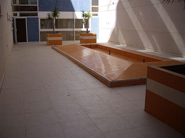 Piso en alquiler en calle El Peñoncillo, Morche, El - 161723834