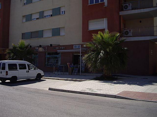 Piso en alquiler en calle El Peñoncillo, Morche, El - 161723854