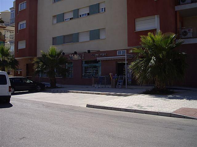 Piso en alquiler en calle El Peñoncillo, Morche, El - 161723858