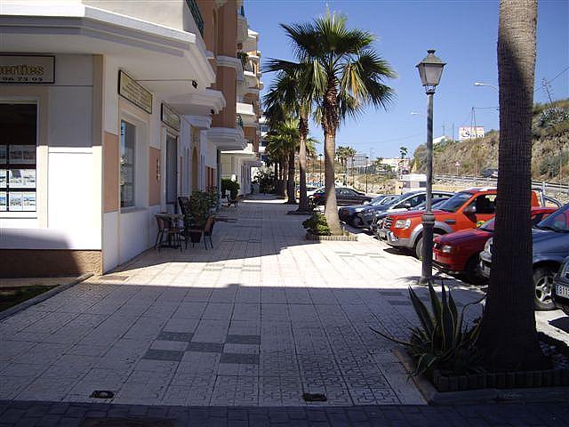 Piso en alquiler en calle El Peñoncillo, Morche, El - 161723863