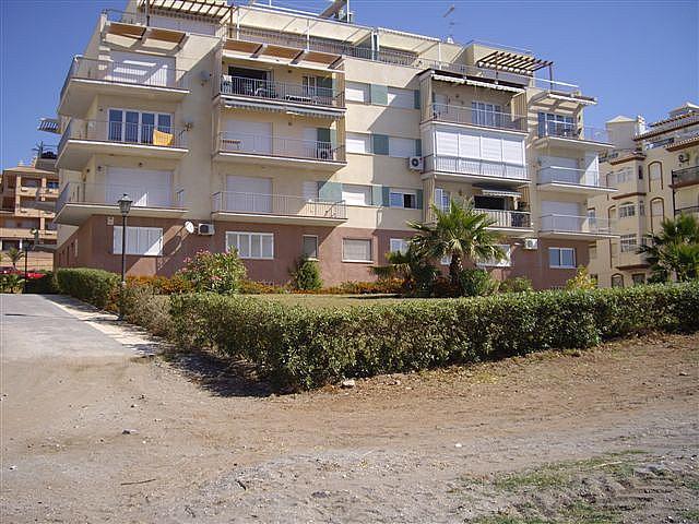 Piso en alquiler en calle El Peñoncillo, Morche, El - 161723882