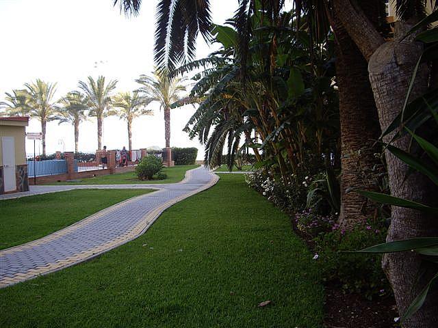 Piso en alquiler en paseo Maritimo de Algarrobo, Algarrobo Costa - 163942468
