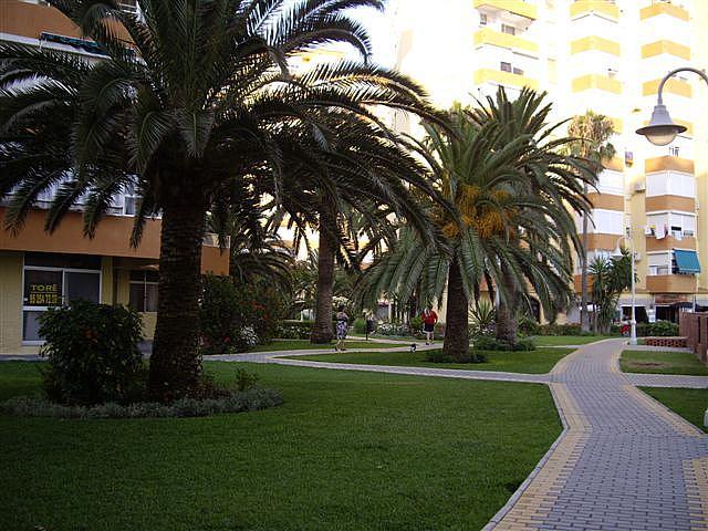 Piso en alquiler en paseo Maritimo de Algarrobo, Algarrobo Costa - 163942469