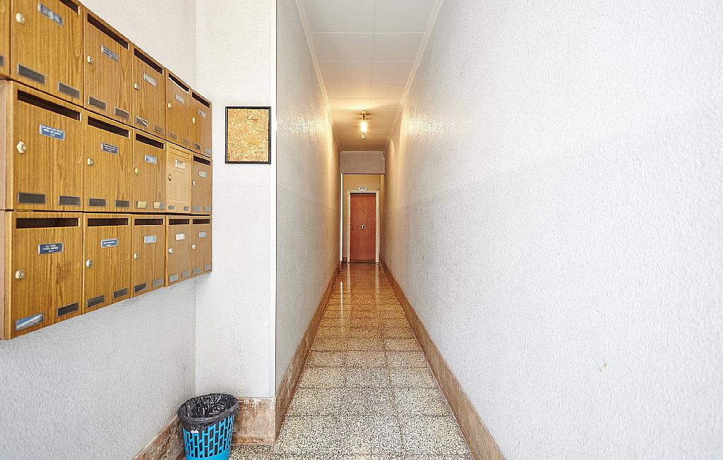 Zonas comunes - Ático en alquiler en calle Casals i Cuberó, El Verdum en Barcelona - 330438868
