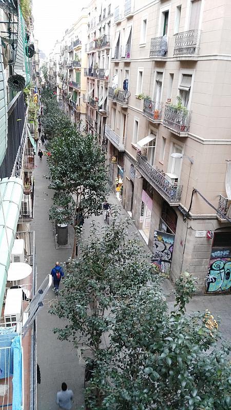 Piso en alquiler en calle Joaquim Costa, El Raval en Barcelona - 238086633