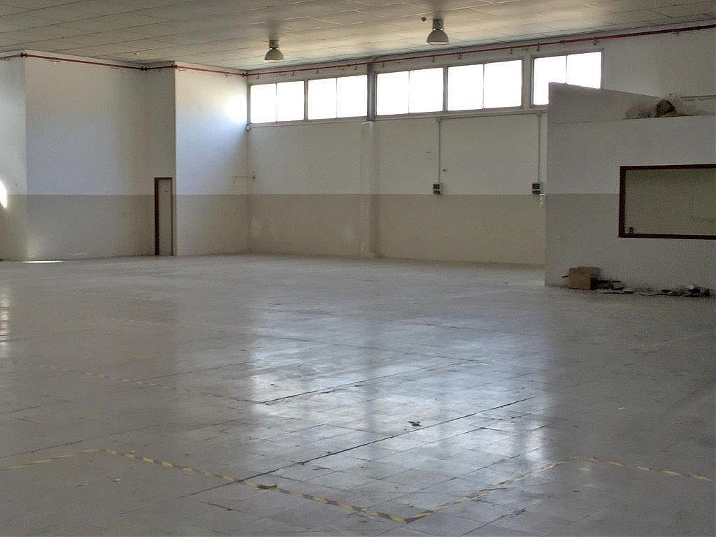 Nave industrial en alquiler en Sant pere (nord) en Terrassa - 228482913