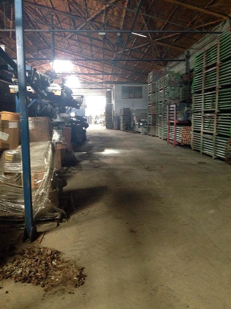 Salón - Nave industrial en alquiler opción compra en San Esteban de Sasroviras en Sant Esteve Sesrovires - 231207870