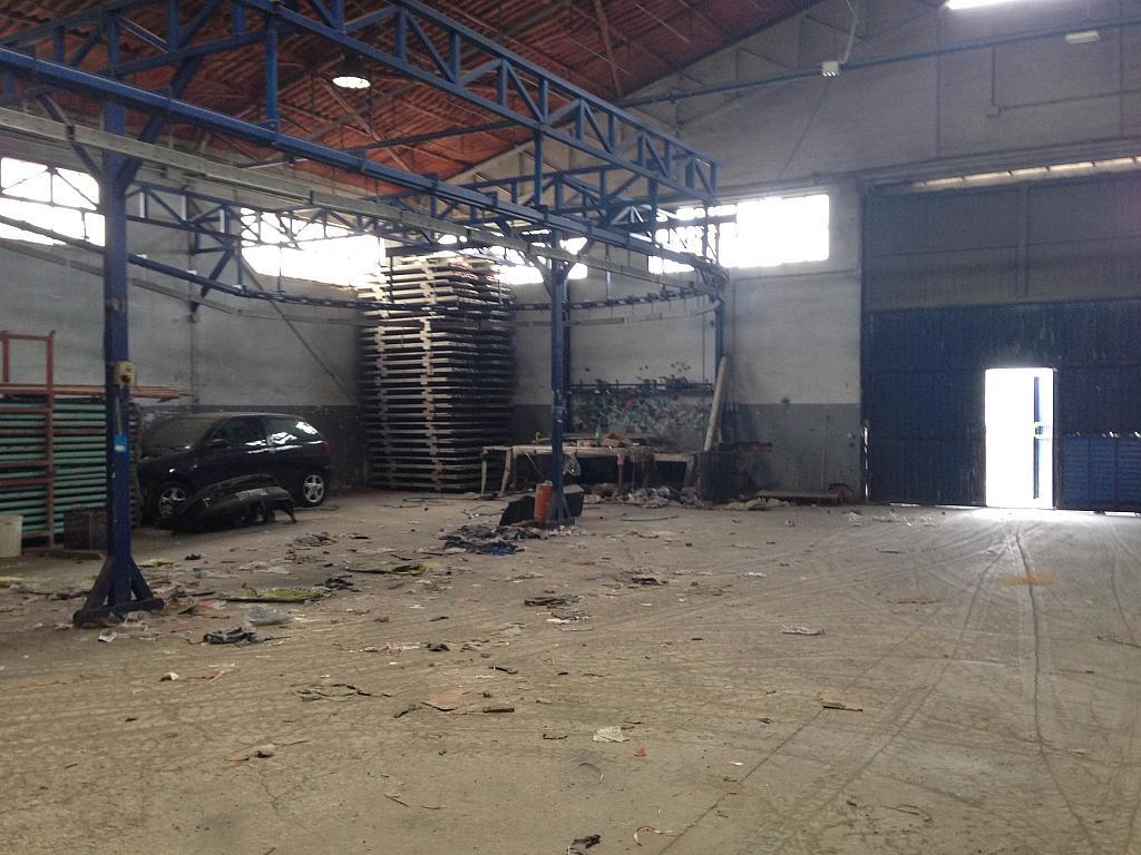 Salón - Nave industrial en alquiler opción compra en San Esteban de Sasroviras en Sant Esteve Sesrovires - 231207878