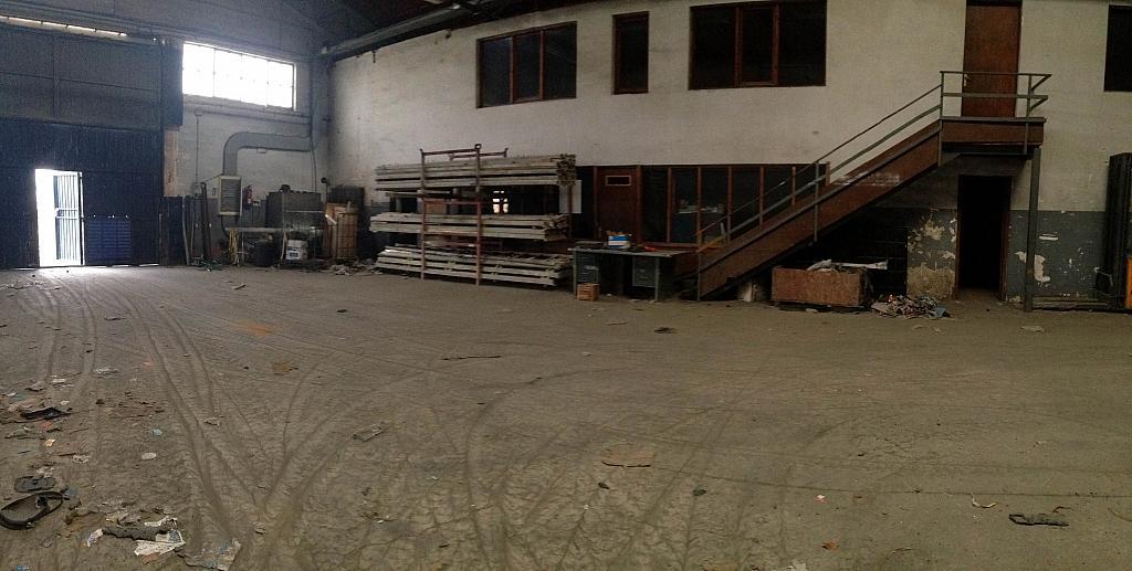 Detalles - Nave industrial en alquiler opción compra en San Esteban de Sasroviras en Sant Esteve Sesrovires - 231207887