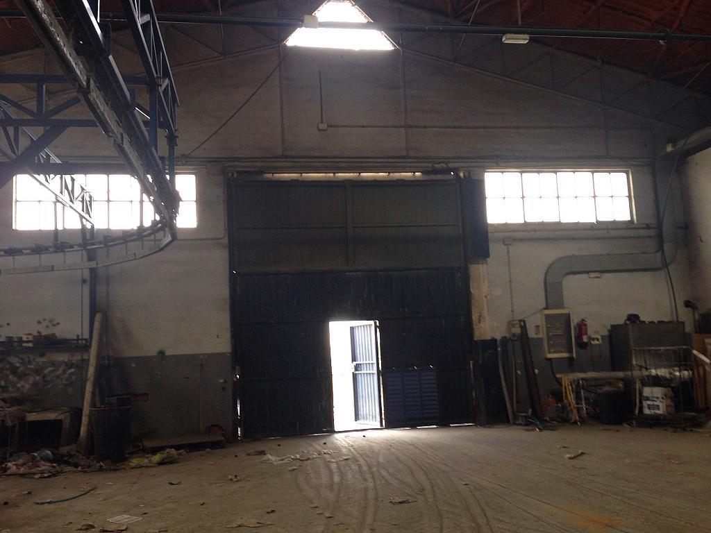 Detalles - Nave industrial en alquiler opción compra en San Esteban de Sasroviras en Sant Esteve Sesrovires - 231207907