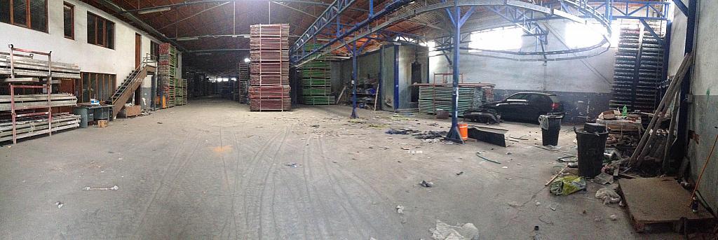 Detalles - Nave industrial en alquiler opción compra en San Esteban de Sasroviras en Sant Esteve Sesrovires - 231207939