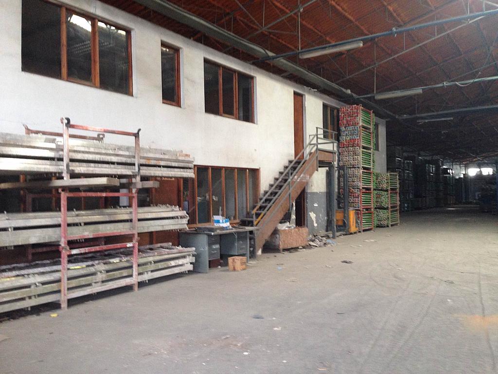 Despacho - Nave industrial en alquiler opción compra en San Esteban de Sasroviras en Sant Esteve Sesrovires - 231207948
