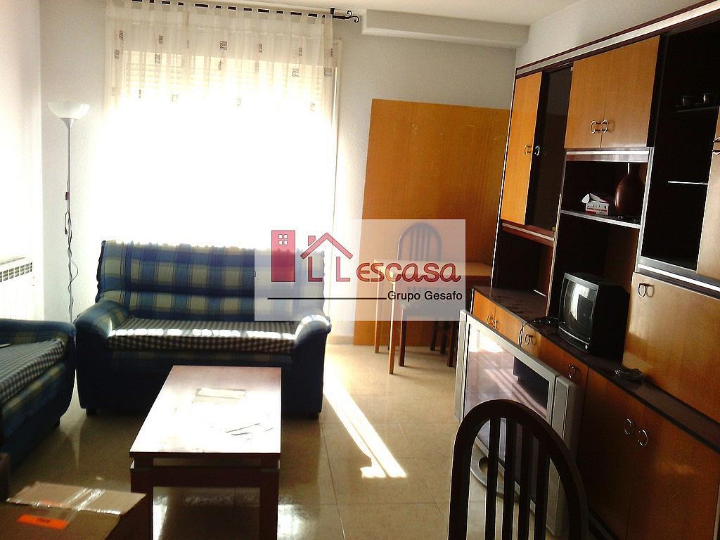 Salón - Dúplex en alquiler en Alameda de la Sagra - 301811176