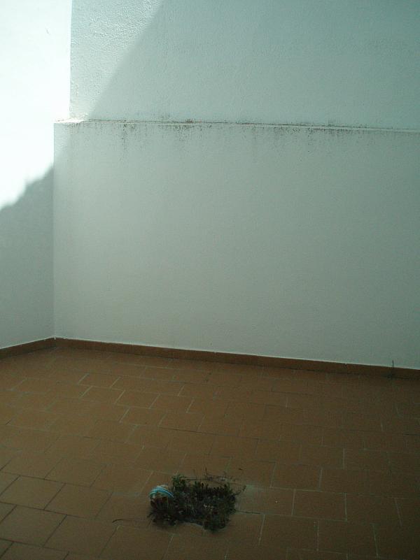 Patio - Oficina en alquiler en Illescas - 168526218