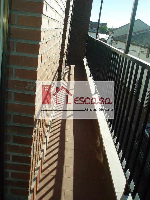 Terraza - Piso en alquiler en Carranque - 206133434