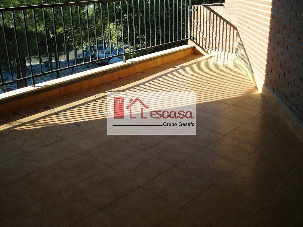 Terraza - Piso en alquiler en Carranque - 206133435