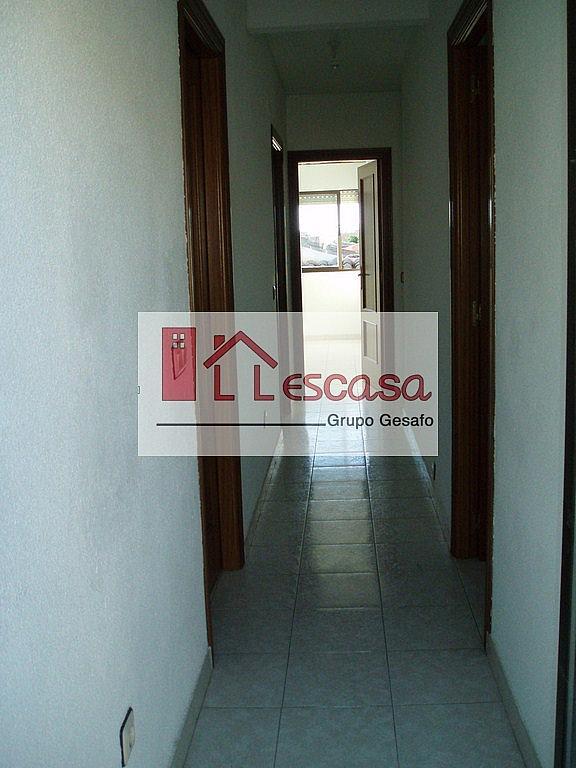Pasillo - Piso en alquiler en Carranque - 206133463