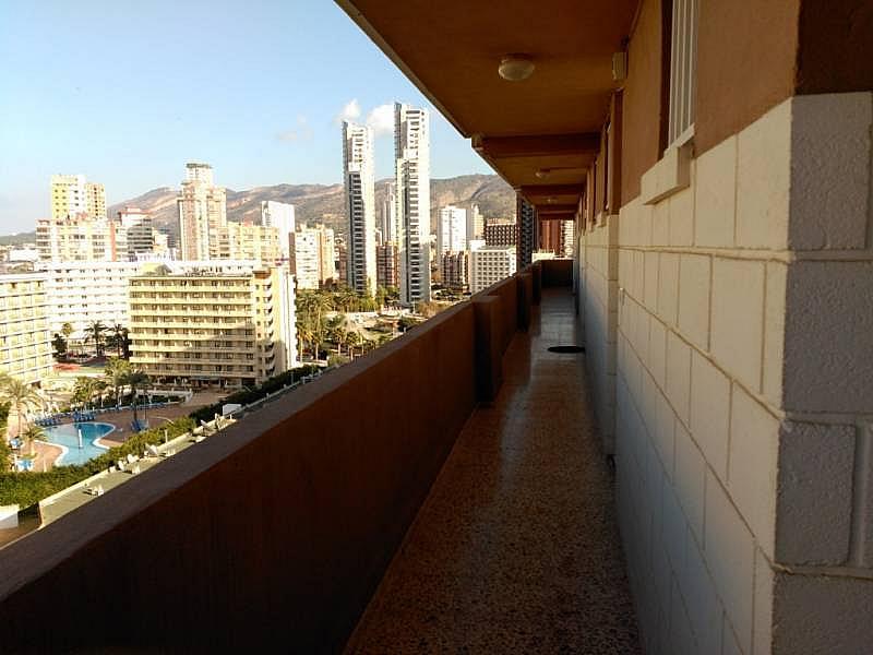 Foto - Apartamento en venta en calle Levante, Levante en Benidorm - 244481388