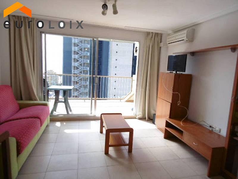 Foto - Apartamento en venta en calle Avenida del Mediterraneo, Benidorm - 253992174
