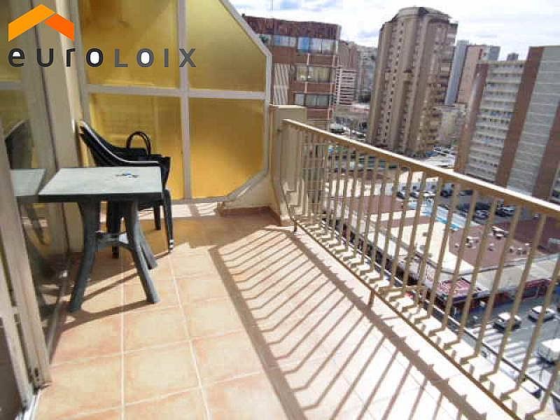 Foto - Apartamento en venta en calle Avenida del Mediterraneo, Benidorm - 253992183