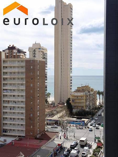 Foto - Apartamento en venta en calle Avenida del Mediterraneo, Benidorm - 253992186
