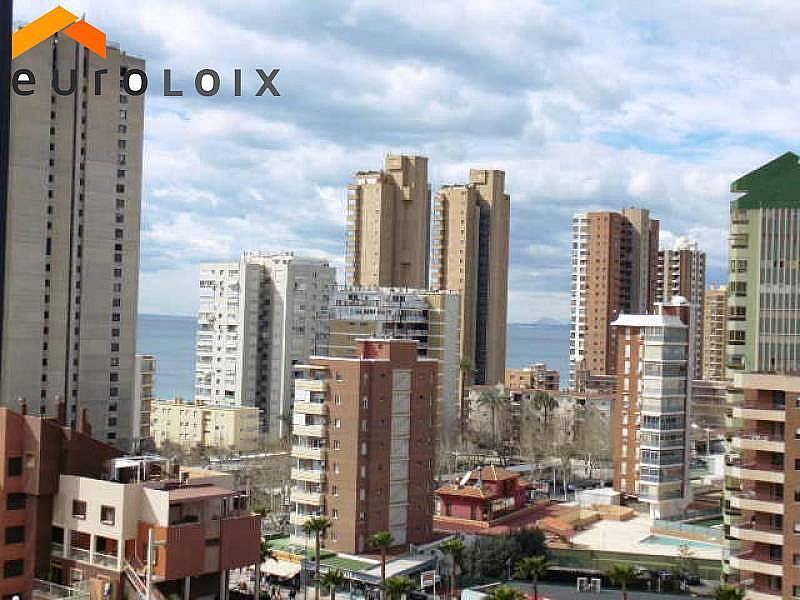 Foto - Apartamento en venta en calle Avenida del Mediterraneo, Benidorm - 253992189