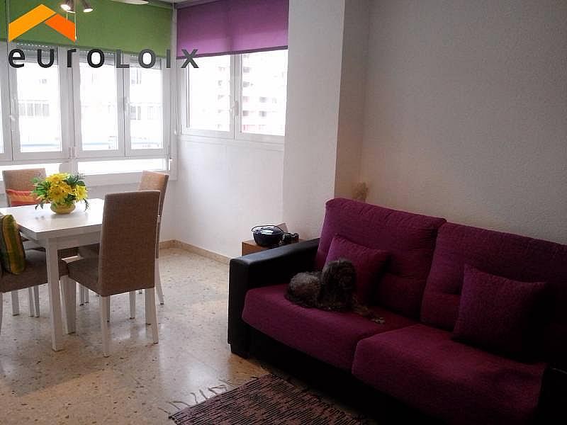 Foto - Apartamento en venta en calle Rincon de Loix, Rincon de Loix en Benidorm - 264187660