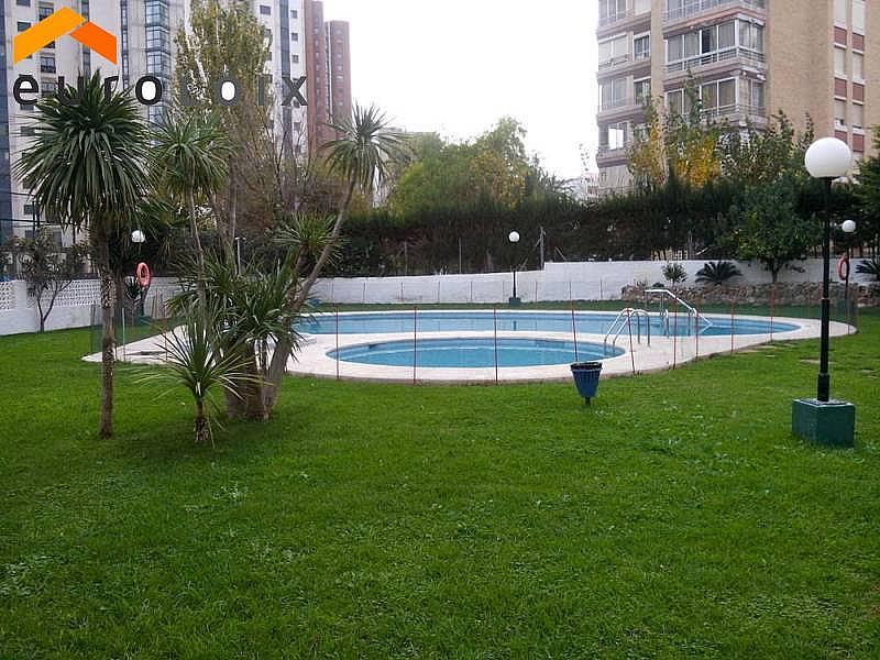 Foto - Apartamento en venta en calle Rincon de Loix, Rincon de Loix en Benidorm - 264187684