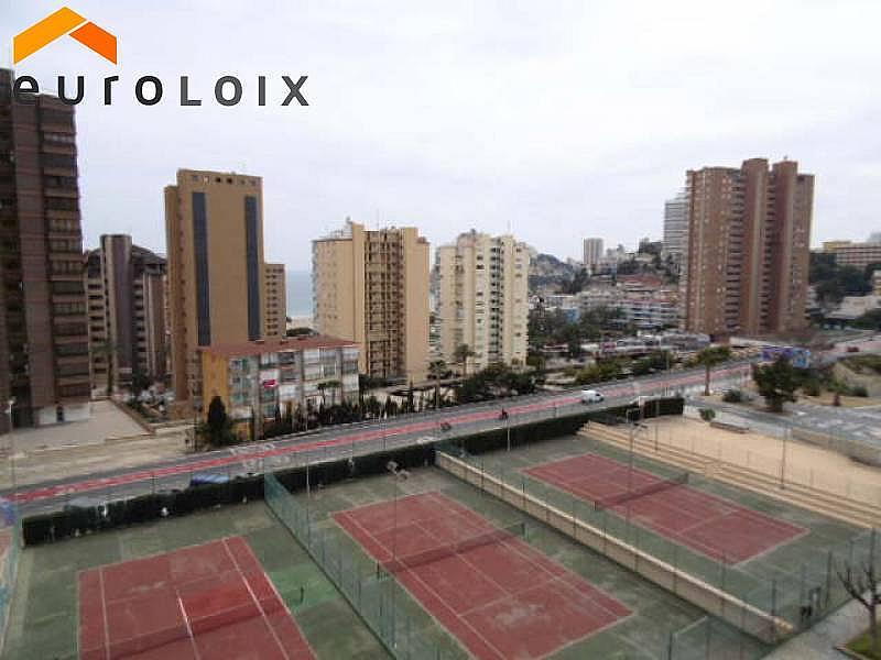 Foto - Apartamento en venta en calle Poniente, Poniente en Benidorm - 267852140