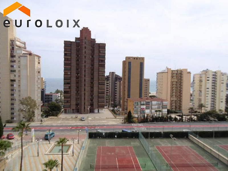 Foto - Apartamento en venta en calle Poniente, Poniente en Benidorm - 267852149