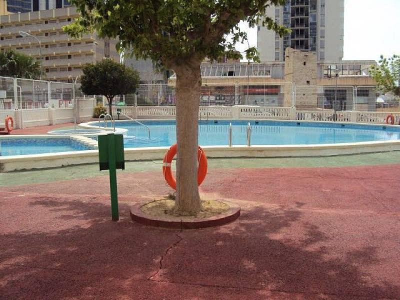 Foto - Apartamento en venta en calle Cala de Benidorm, Poniente en Benidorm - 271382076