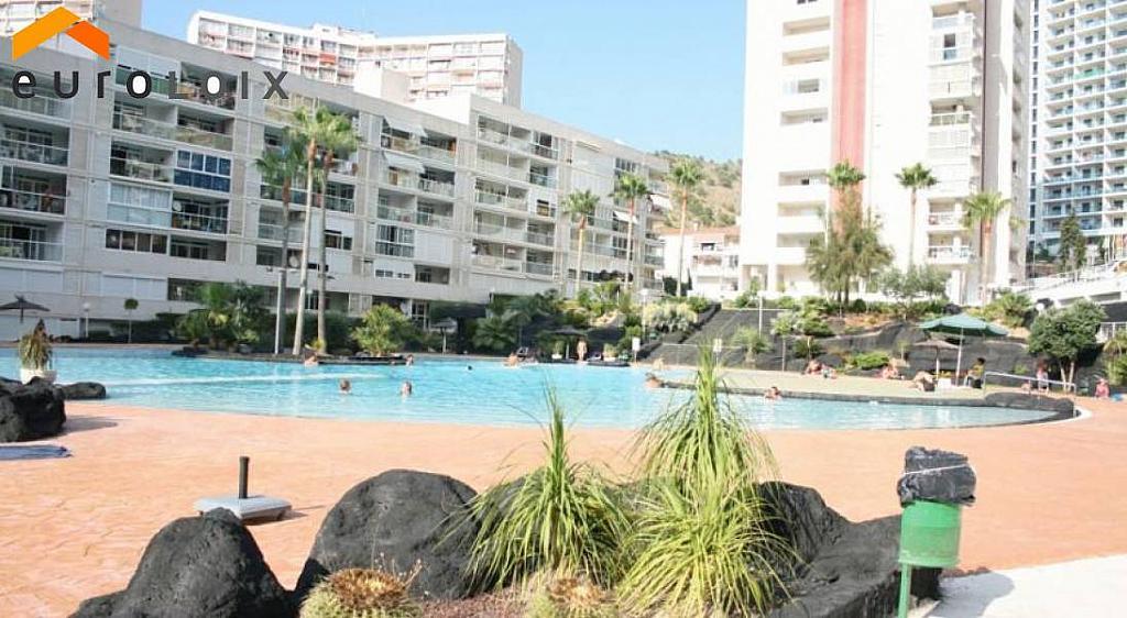 Foto - Apartamento en venta en calle Rincon de Loix, Rincon de Loix en Benidorm - 272945135
