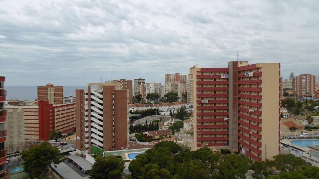 Foto - Apartamento en venta en calle Poniente, Poniente en Benidorm - 274971093