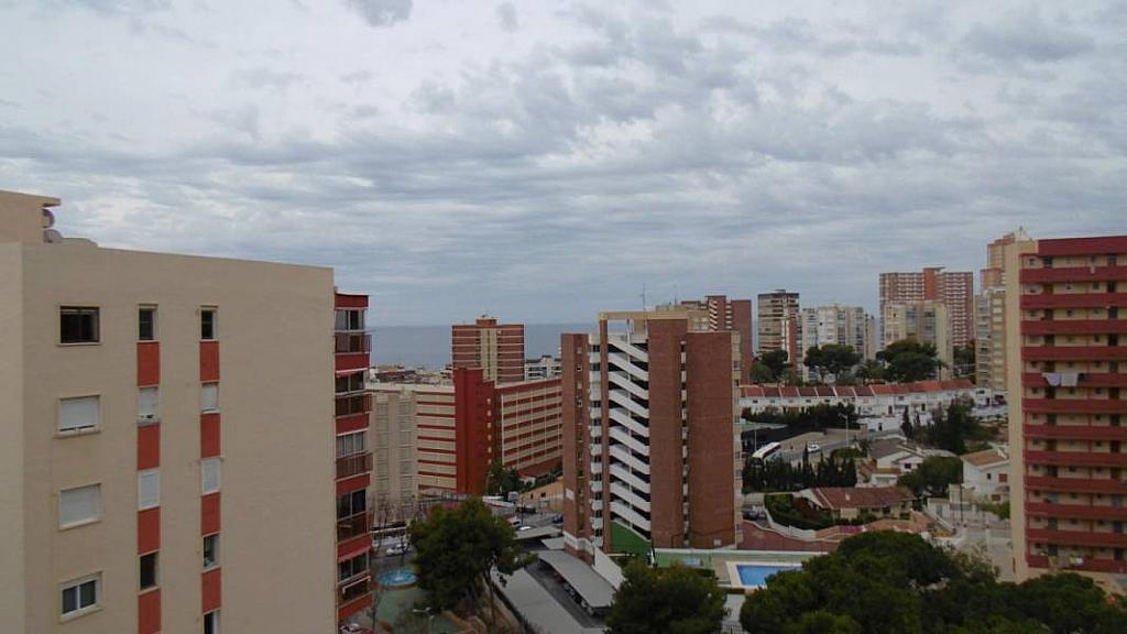 Foto - Apartamento en venta en calle Poniente, Poniente en Benidorm - 274971111