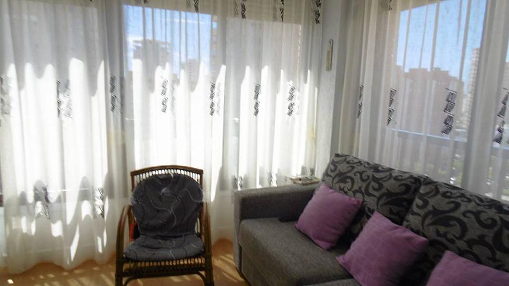 Foto - Apartamento en venta en calle Nuevos Juzgados, Levante en Benidorm - 275353269