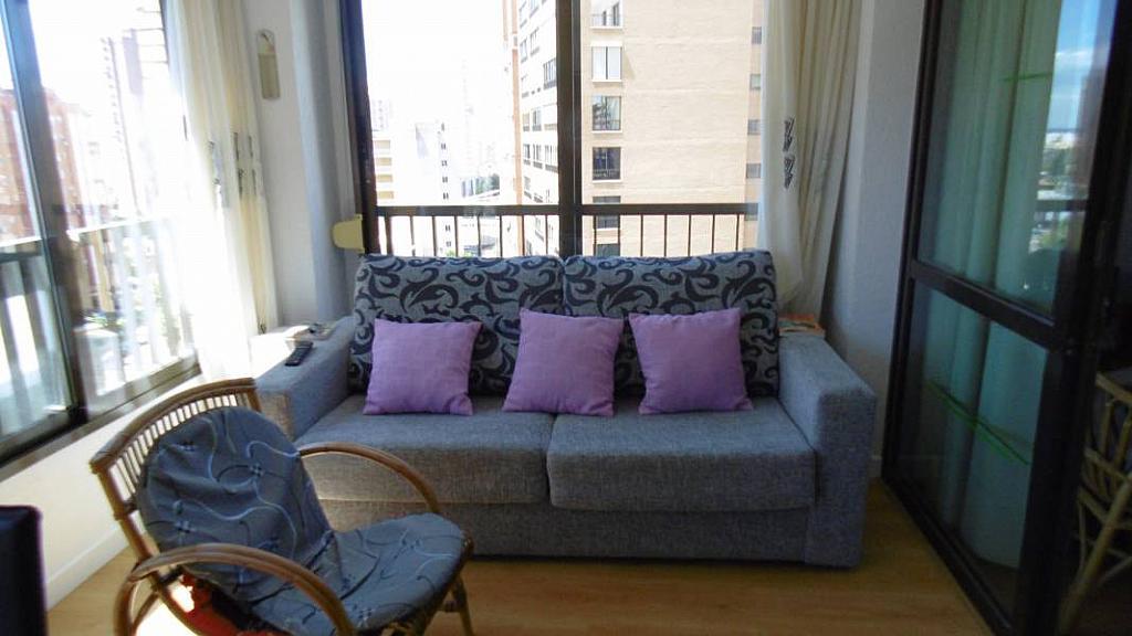 Foto - Apartamento en venta en calle Nuevos Juzgados, Levante en Benidorm - 275353284