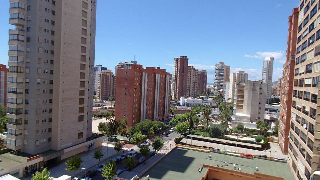 Foto - Apartamento en venta en calle Nuevos Juzgados, Levante en Benidorm - 275353293
