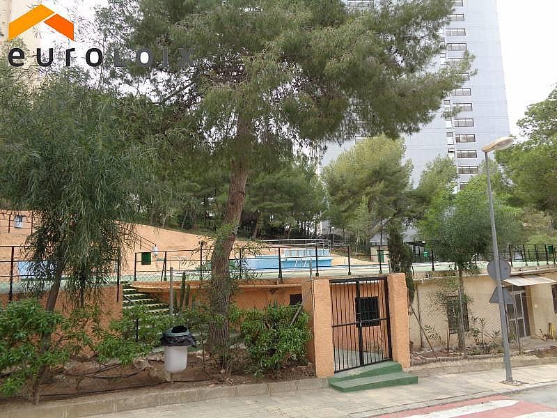 Foto - Apartamento en venta en calle Rincon de Loix, Rincon de Loix en Benidorm - 278879679