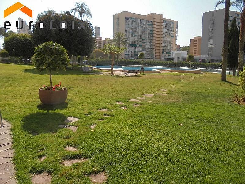 Foto - Apartamento en venta en calle Juzgados, Benidorm - 288520462