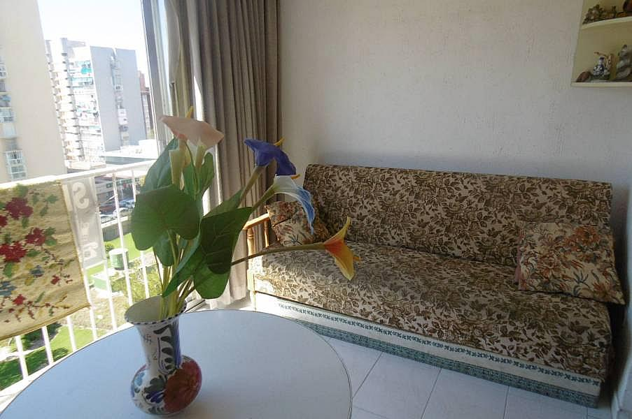 Foto - Apartamento en venta en calle Juzgados, Benidorm - 290115671