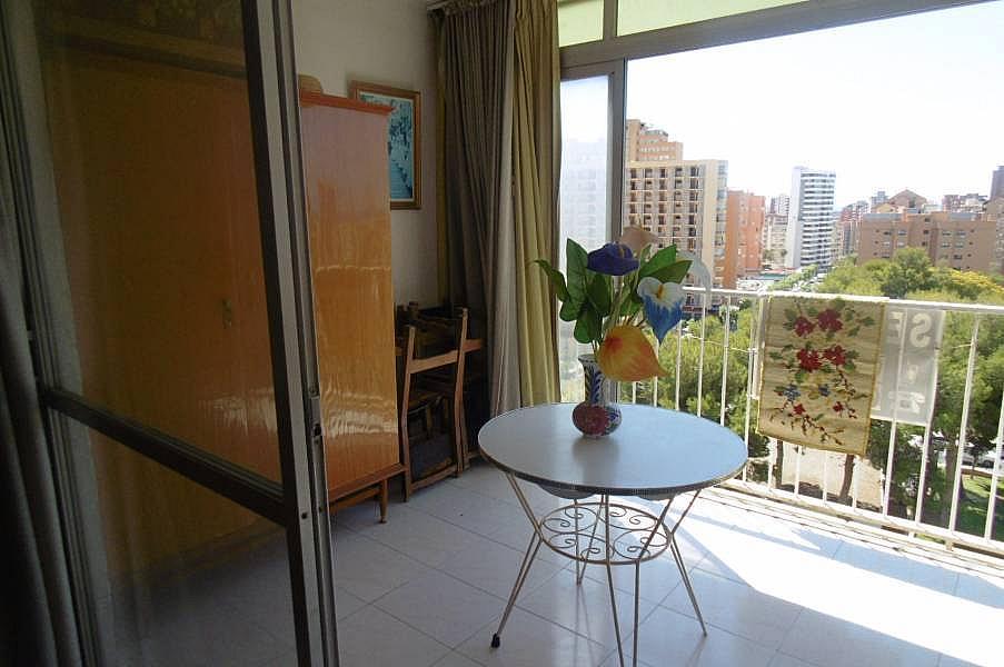 Foto - Apartamento en venta en calle Juzgados, Benidorm - 290115686