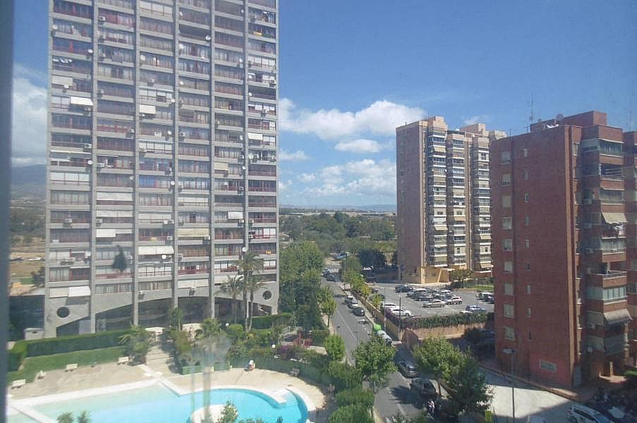 Foto - Apartamento en venta en calle Juzgados, Benidorm - 290115704