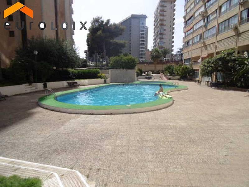 Foto - Apartamento en alquiler de temporada en calle Levante, Levante en Benidorm - 294329789