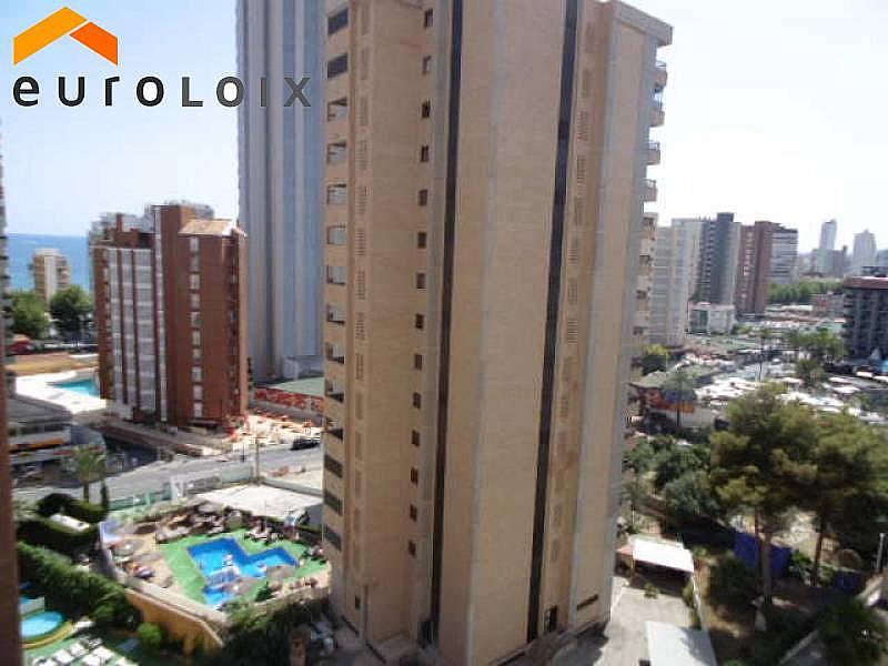 Foto - Apartamento en alquiler de temporada en calle Levante, Levante en Benidorm - 294329804