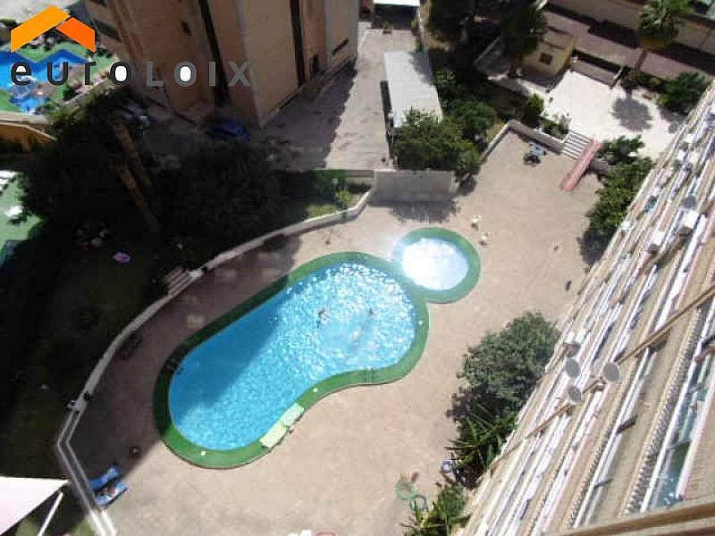 Foto - Apartamento en alquiler de temporada en calle Levante, Levante en Benidorm - 294329810