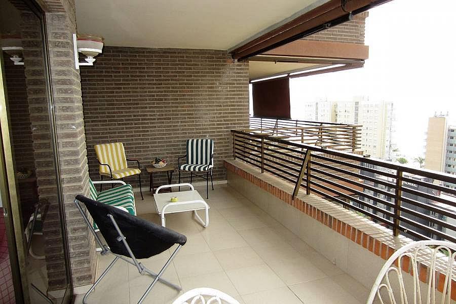 Foto - Apartamento en venta en calle Poniente, Poniente en Benidorm - 302104634