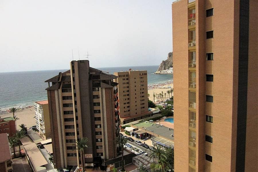 Foto - Apartamento en venta en calle Poniente, Poniente en Benidorm - 302104640