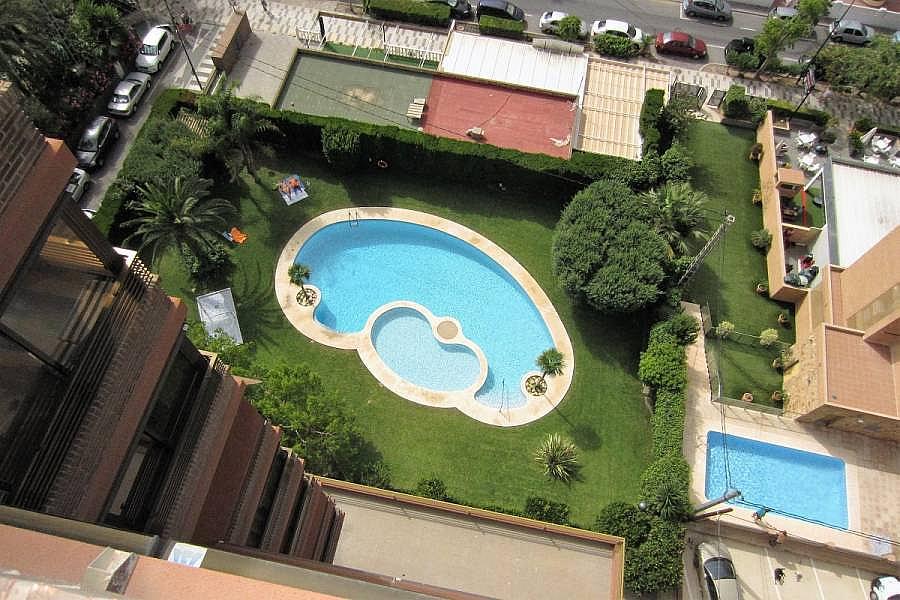 Foto - Apartamento en venta en calle Poniente, Poniente en Benidorm - 302104643