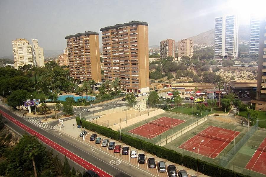 Foto - Apartamento en venta en calle Poniente, Poniente en Benidorm - 302104661